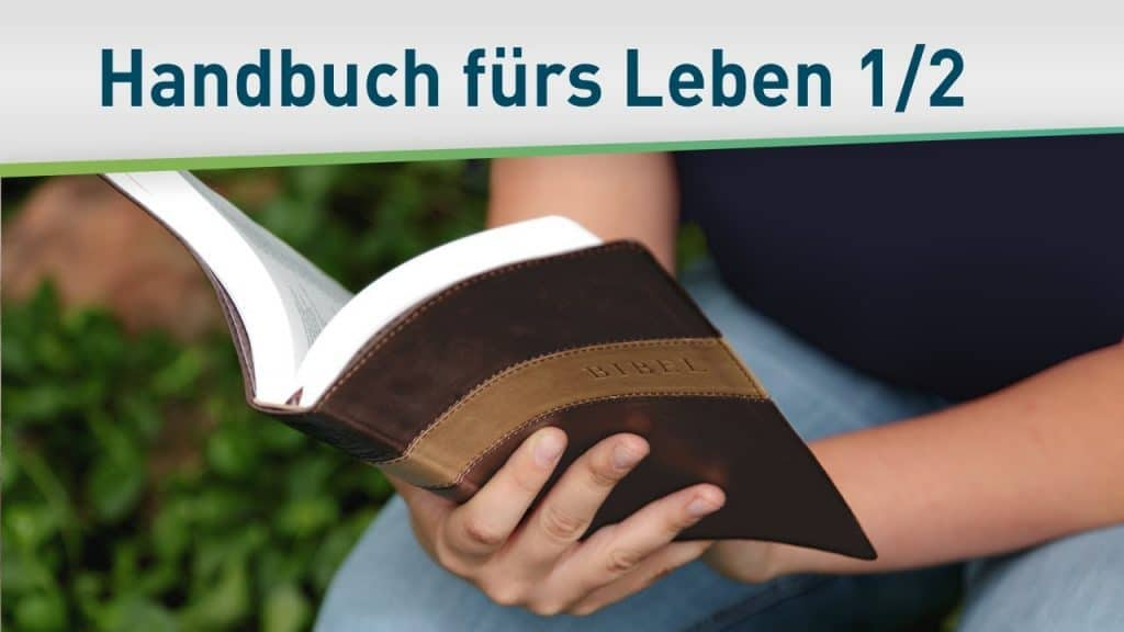 Gottes Handbuch für dein Leben 1/2 41