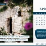 Kalender 2020: Entdecke Israel mit Bayless Conley 4