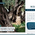 Kalender 2020: Entdecke Israel mit Bayless Conley 6