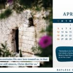 Calendar 2020: Inspiration from the Holy Land 6